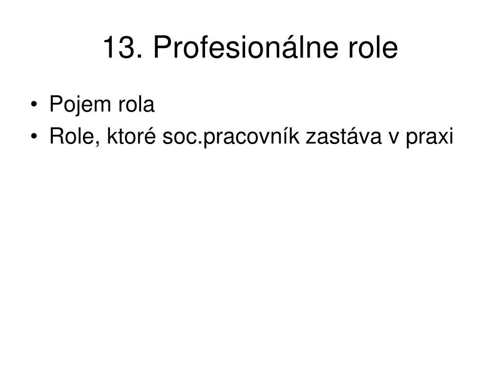 13. Profesionálne role