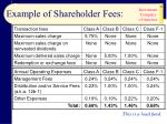 example of shareholder fees