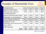 example of shareholder fees26
