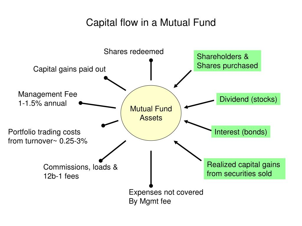 Capital flow in a Mutual Fund