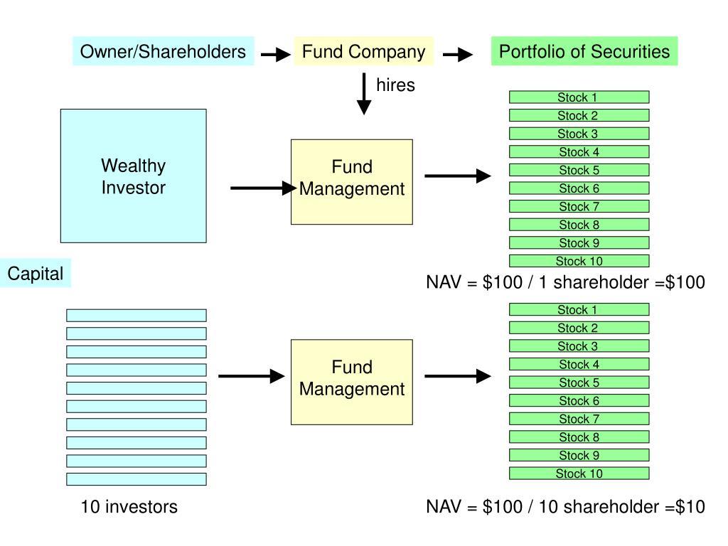 Owner/Shareholders