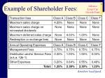 example of shareholder fees11