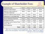 example of shareholder fees12