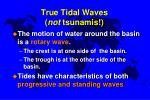 true tidal waves not tsunamis