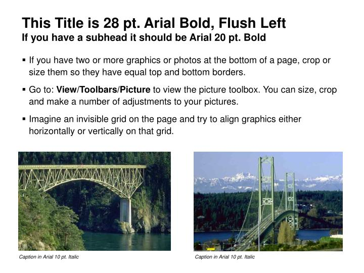 This Title is 28 pt. Arial Bold, Flush Left