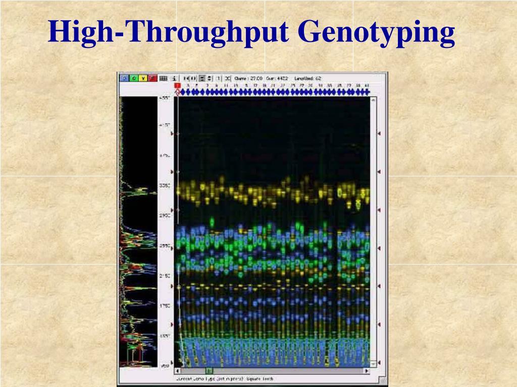 High-Throughput Genotyping
