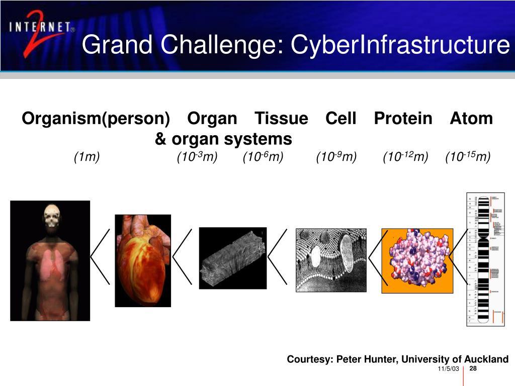 Grand Challenge: CyberInfrastructure