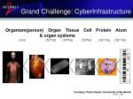 grand challenge cyberinfrastructure