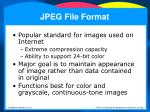jpeg file format