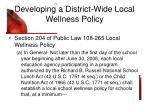 developing a district wide local wellness policy