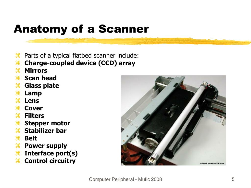 Anatomy of a Scanner