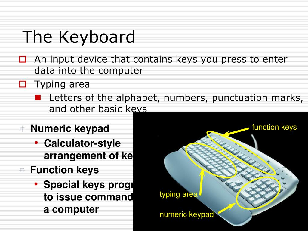 An input device that contains keys you press to enter data into the computer