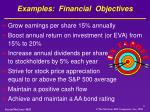 examples financial objectives