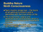 buddha nature ninth consciousness