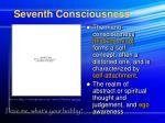 seventh consciousness