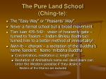 the pure land school ching te