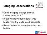 foraging observations
