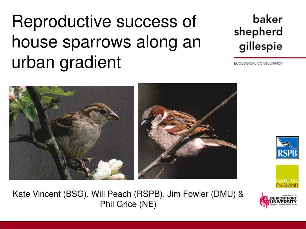 reproductive success of house sparrows along an urban gradient l.