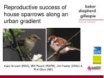 reproductive success of house sparrows along an urban gradient