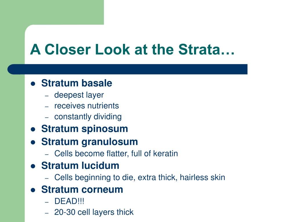 A Closer Look at the Strata…