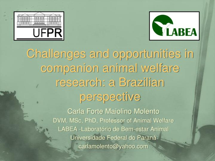 challenges and opportunities in companion animal welfare research a brazilian perspective n.