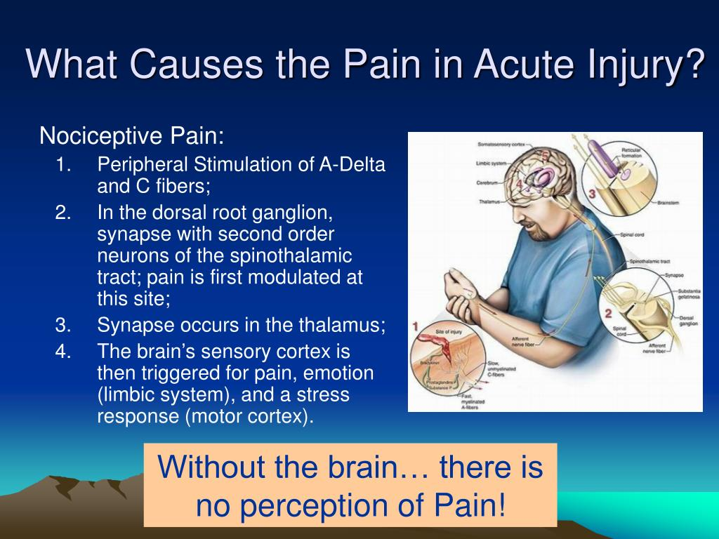 What Causes the Pain in Acute Injury?