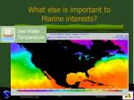 what else is important to marine interests21