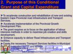 2 purpose of this conditional grant and capital expenditure