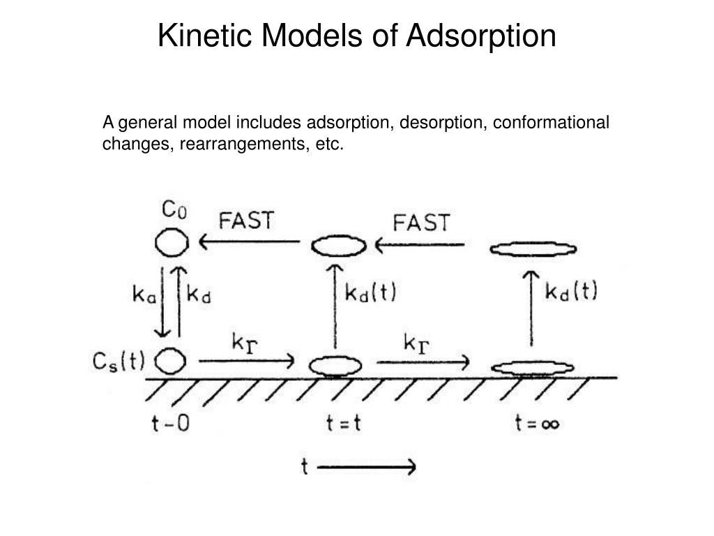 Kinetic Models of Adsorption