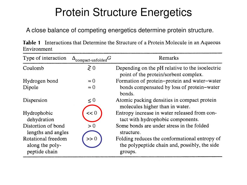 Protein Structure Energetics