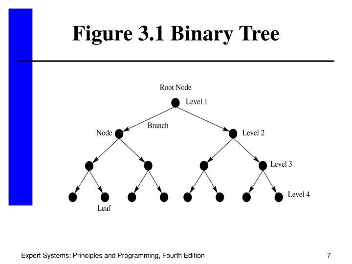 Figure 3.1 Binary Tree
