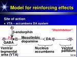 model for reinforcing effects