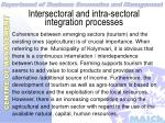 intersectoral and intra sectoral integration processes30