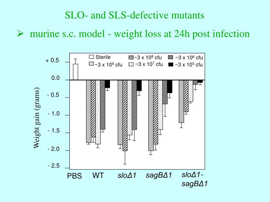 SLO- and SLS-defective mutants