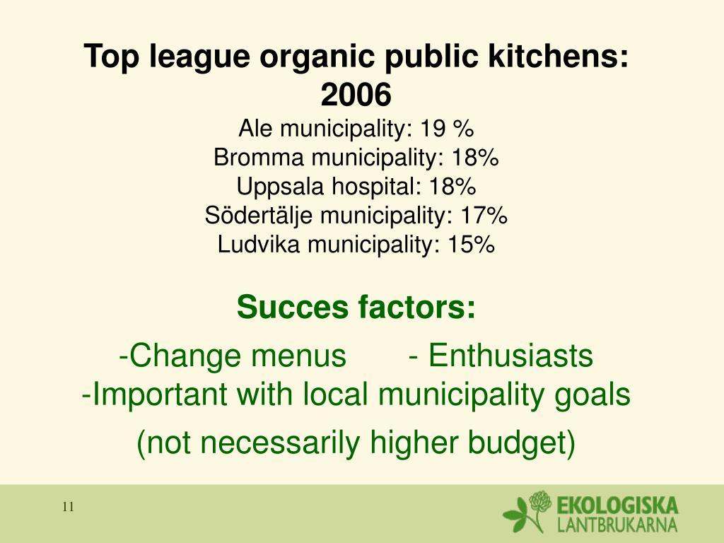 Top league organic public kitchens: