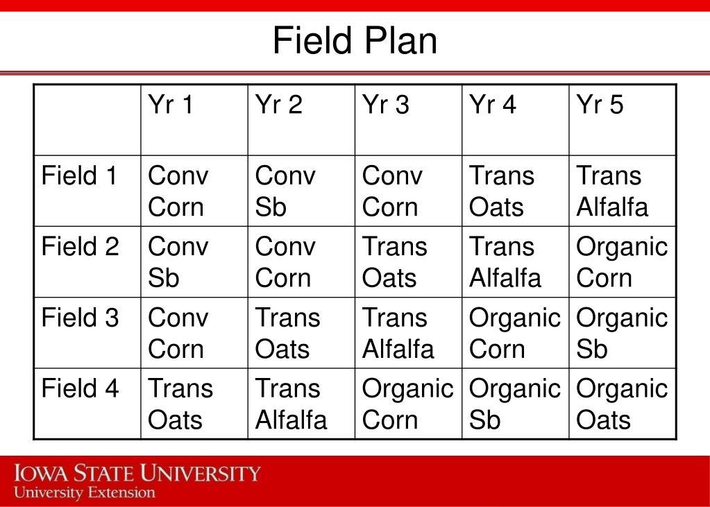 Field Plan