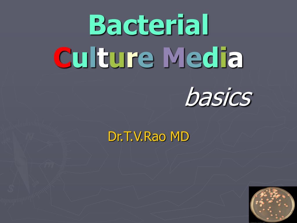 bacterial c u l t u r e m e d i a basics l.