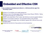 embedded and effective csn