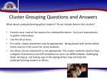 cluster grouping questions and answers14