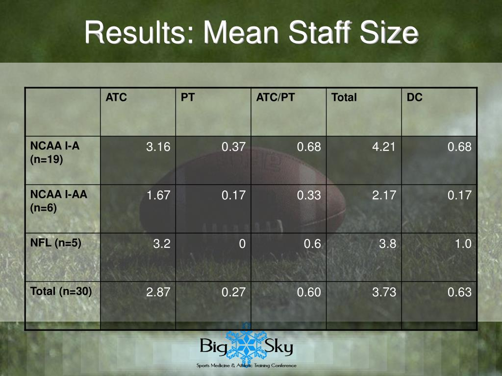 Results: Mean Staff Size