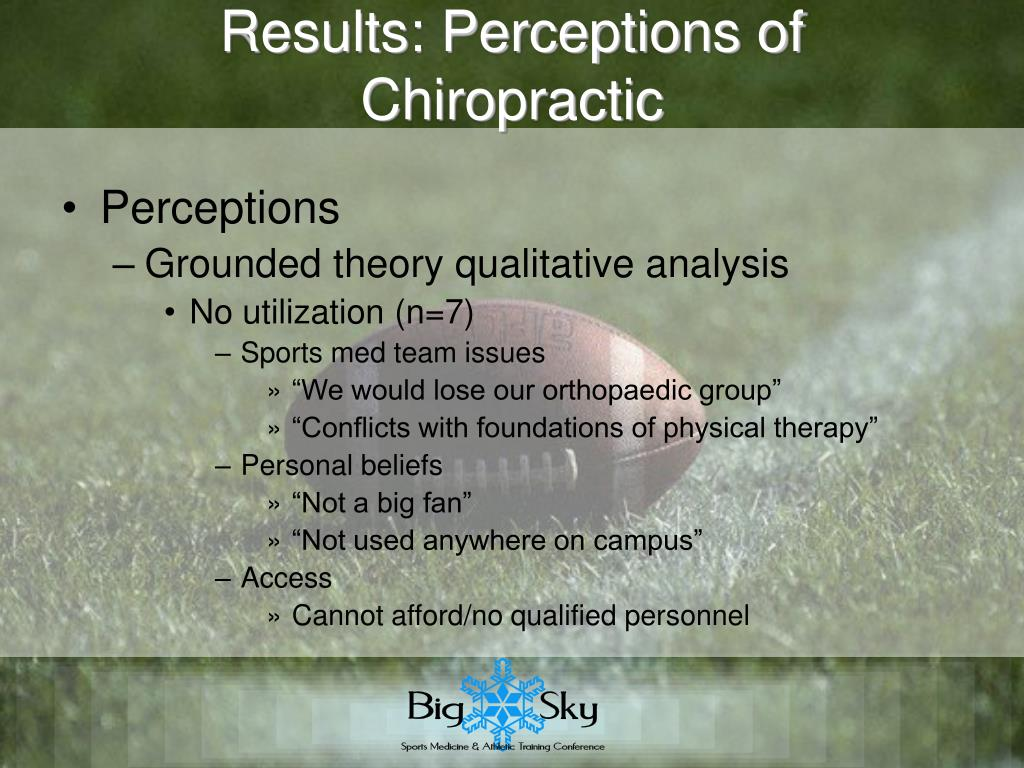 Results: Perceptions of Chiropractic