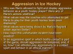 aggression in ice hockey