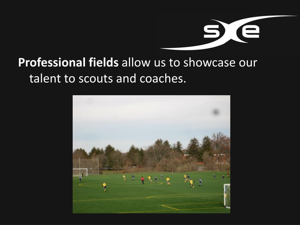 Professional fields
