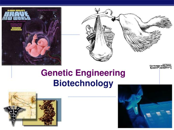 exploring the real benefits of genetic engineering in the modern world Technology is perhaps the greatest agent of change in the modern world while never without risk, technological breakthroughs promise innovative solutions to the most pressing global challenges of our time from zero-emission cars fuelled by hydrogen to computer chips modelled on the human brain.