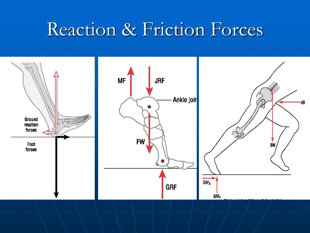 Reaction & Friction Forces