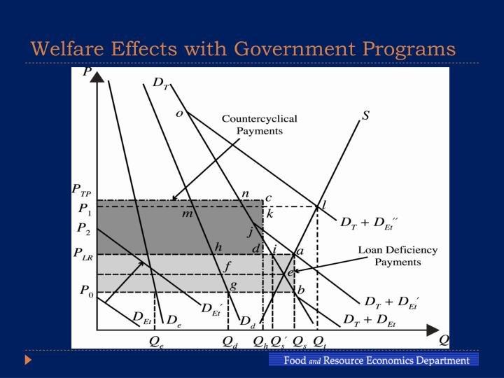 Welfare effects with government programs