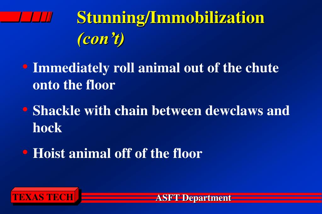 Stunning/Immobilization
