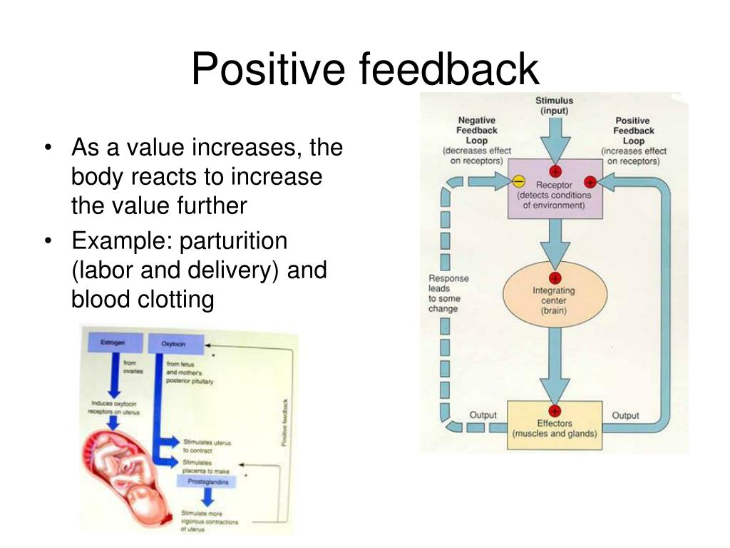 As a value increases, the body reacts to increase the value further