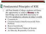 fundamental principles of ige