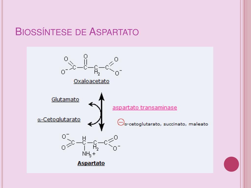 Biossíntese de Aspartato